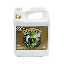 Advanced Nutrients - Big Bud Coco (250ml)