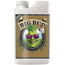 Advanced Nutrients - Big Bud Coco (1L)