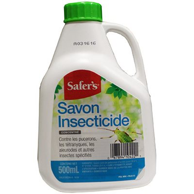 Safers - Insecticidal Soap Concentrate (500ml)