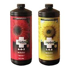 Nutri Plus - Nutrient Bloom A (1L)