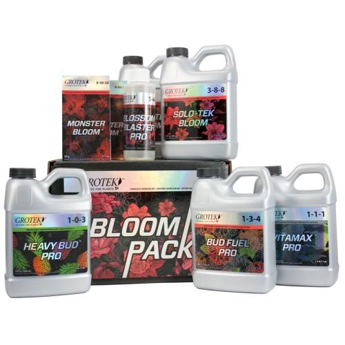 12 Daze Of Christmas - Bloom Starter Kit Sale