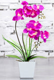 LED Lighted Artificial Orchid Arrangement-Battery Operated Orchid Pot with 9 Lights