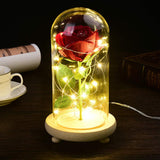 Beauty and The Beast Rose Kit,Enchanted Rose,Eternal Rose,Red Silk Rose,Forever Rose in Glass Dome with Led Light in Glass Dome On Wooden Base (Beauty and The Beast Black)