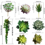 Assorted Artificial Succulents Picks Textured Aloe Faux Succulent Pick Succulent Stems Fake Succulent Bouquet Pack of 14