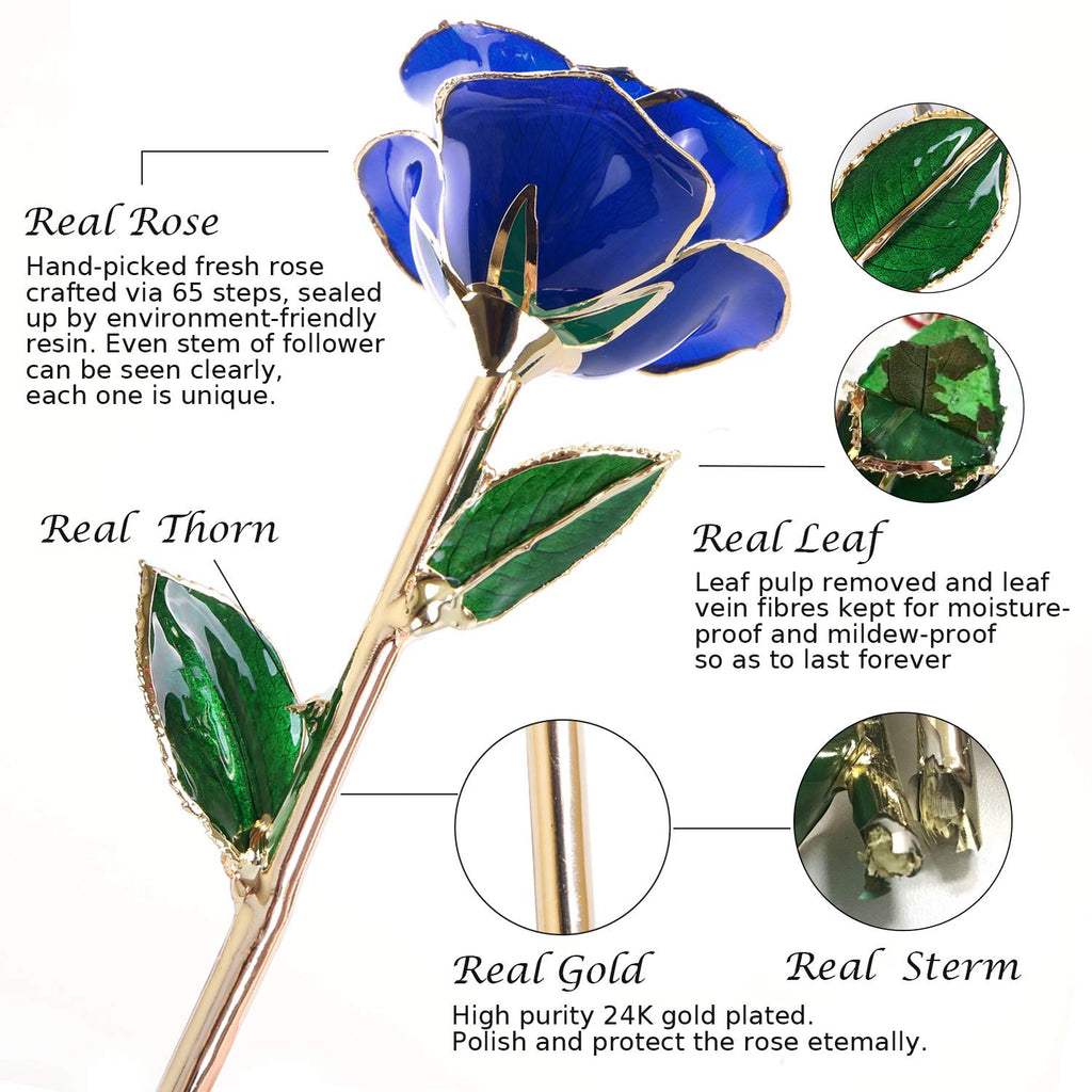 Gold Dipped Rose, Long Stem 24k Gold Dipped Real Rose Lasted Forever with Stand, Great Valentines's Day/Christmas/Wedding/Birthday Gifts for Her(Blue)