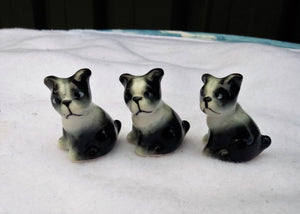 Three Miniature 1960s Black and White Puppies