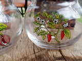 Pair Corked Herb Storage Jar New Vintage Stock