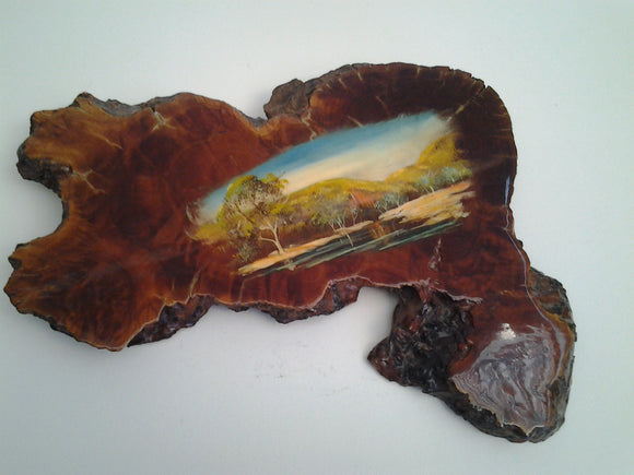 Genuine Australian Artist Painted  Mallee Root Slab