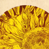 """Sunflower"" Original"