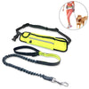 Multi Functional Waist Pouch Dog Leash