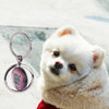 Pet Tracker Tag GPS Tracking Device
