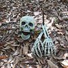 Yard Skull Decoration