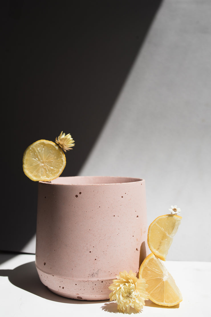Blush concrete planter