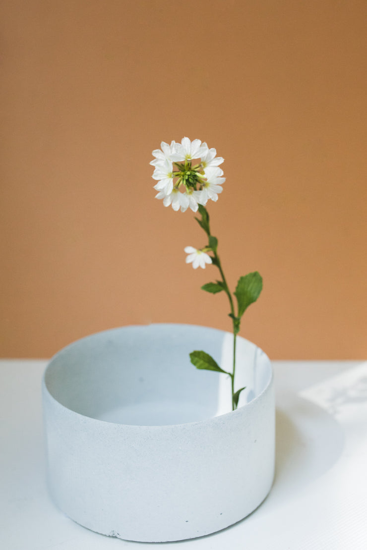 Port Planter: White