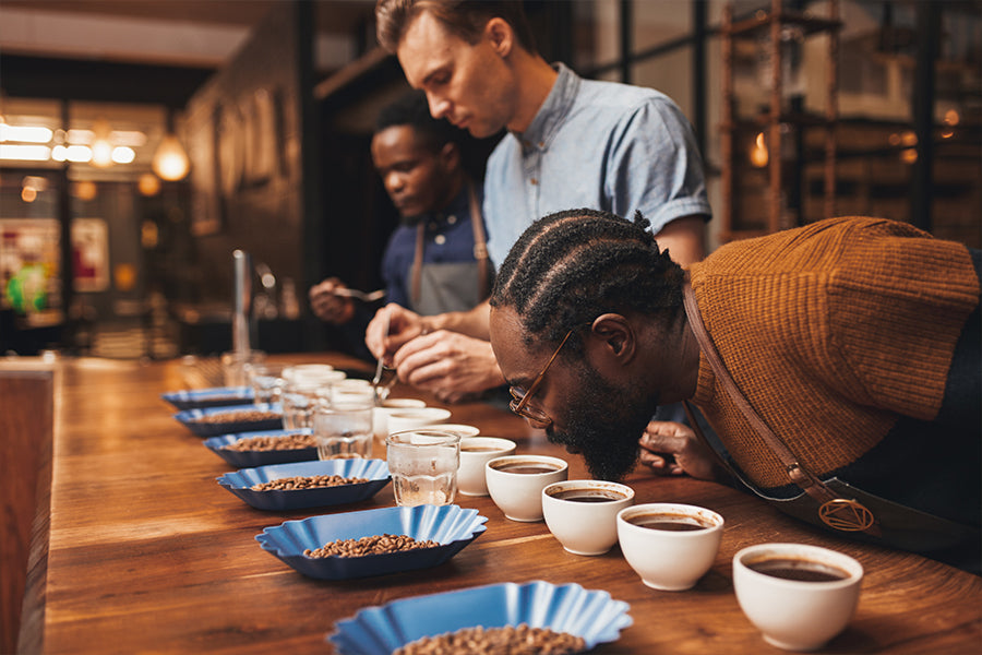 Coffee 101 - Cupping