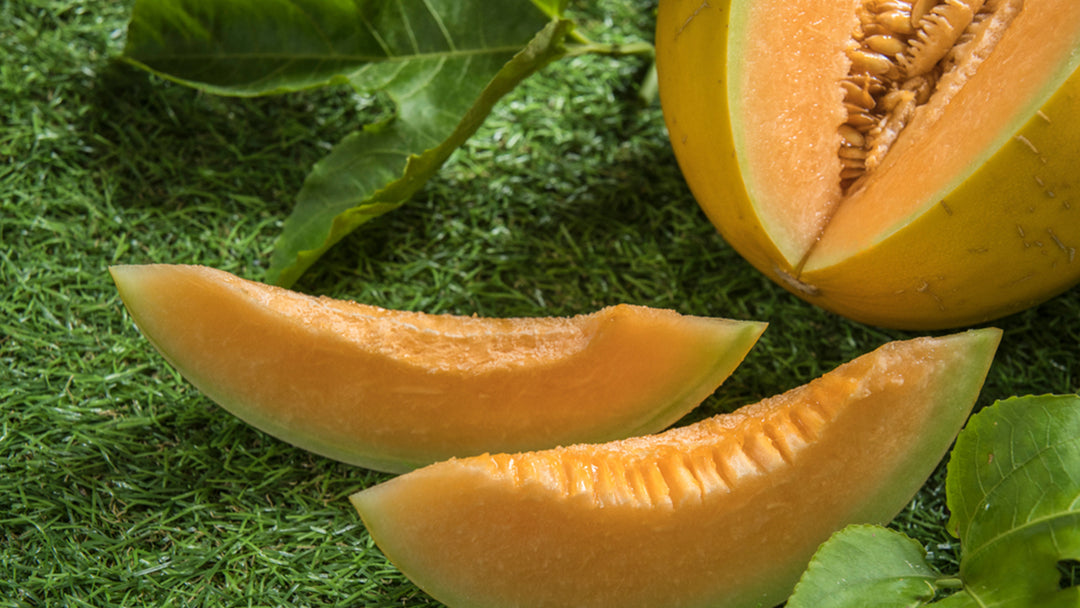 Five key cantaloupe nutrition facts.