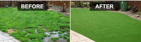 After using liquid grass seed spray kettle
