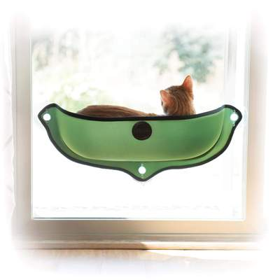 green color cat hammock window