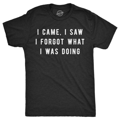 Mens I Came I Saw I Forgot What I Was Doing Tshirt Funny Sarcastic Tee For Guys