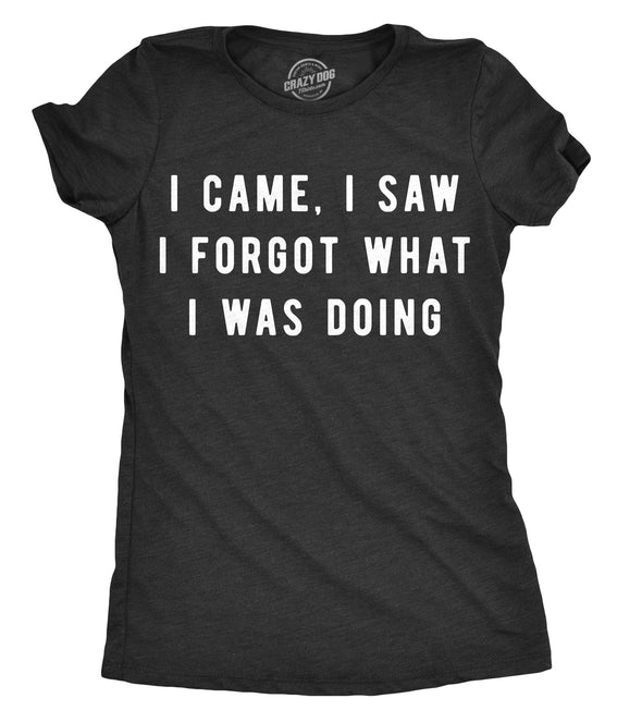Womens I Came I Saw I Forgot What I Was Doing Tshirt Funny Sarcastic Tee For Ladies