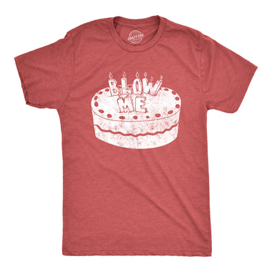 Mens Blow Me Birthday Cake Tshirt Funny Candles Happy Birthday Graphic Novelty Tee