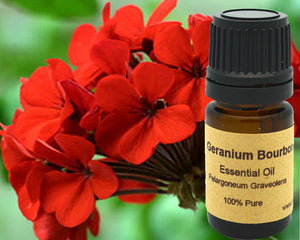 Geranium Bourbon Essential Oil 5 ml, 10 ml or 15