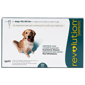 Revolution-for-Large-Dogs-40.1-85lbs-Green-easyvetsupplies