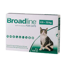 Load image into Gallery viewer, boardline7_5_un-large-cats-easyvetsupplies