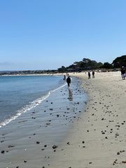 Monterey beach looking for sea glass seaside harmony