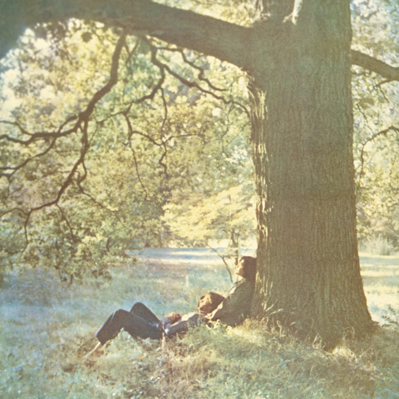 Plastic Ono Band (LP)