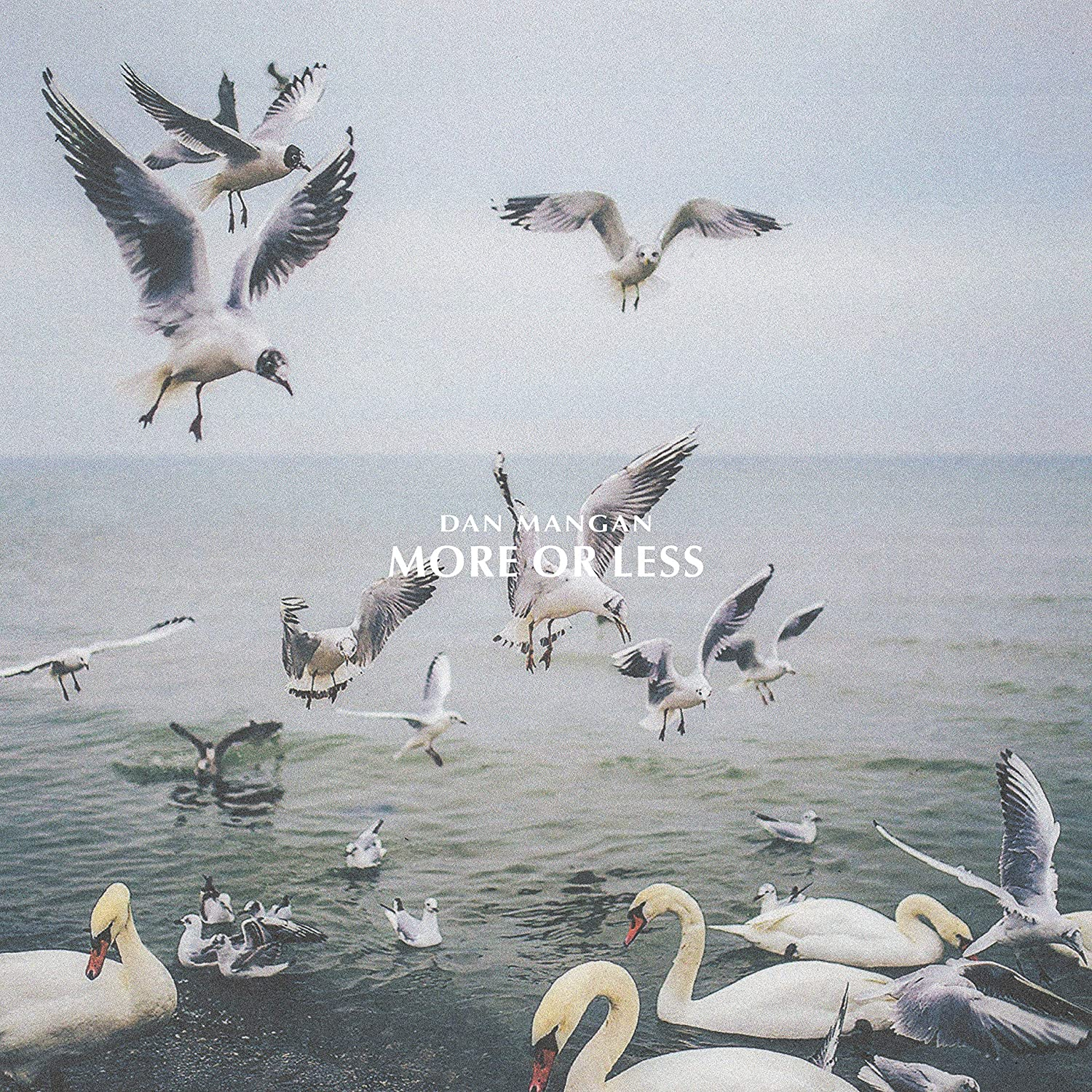 More Or Less (LP)