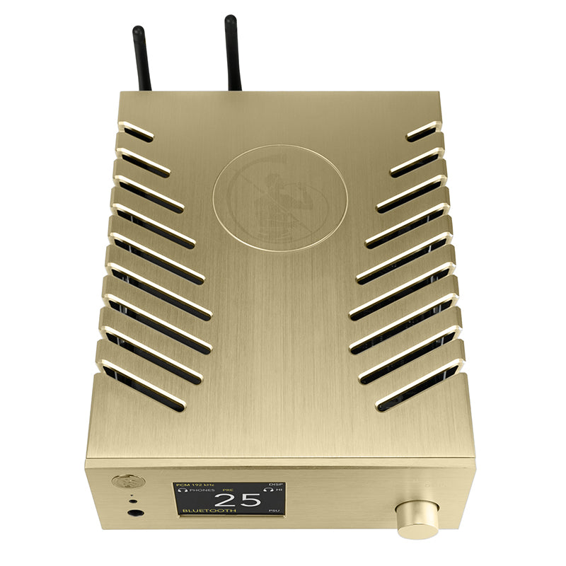 GOLD NOTE - DS-10 THE NEW GENERATION STREAMING DAC