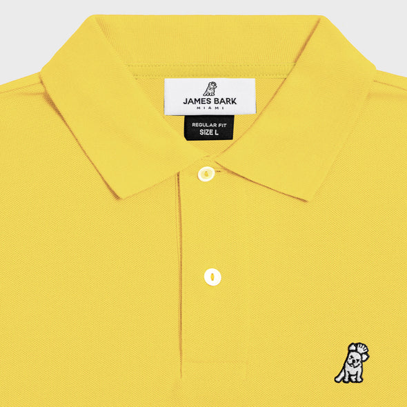 Classic Frenchie - Yellow/White