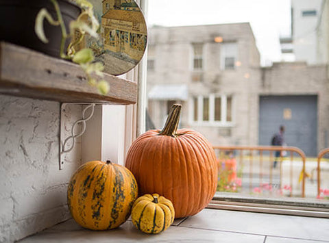 6 Spooky and Affordable Halloween Travel Destinations