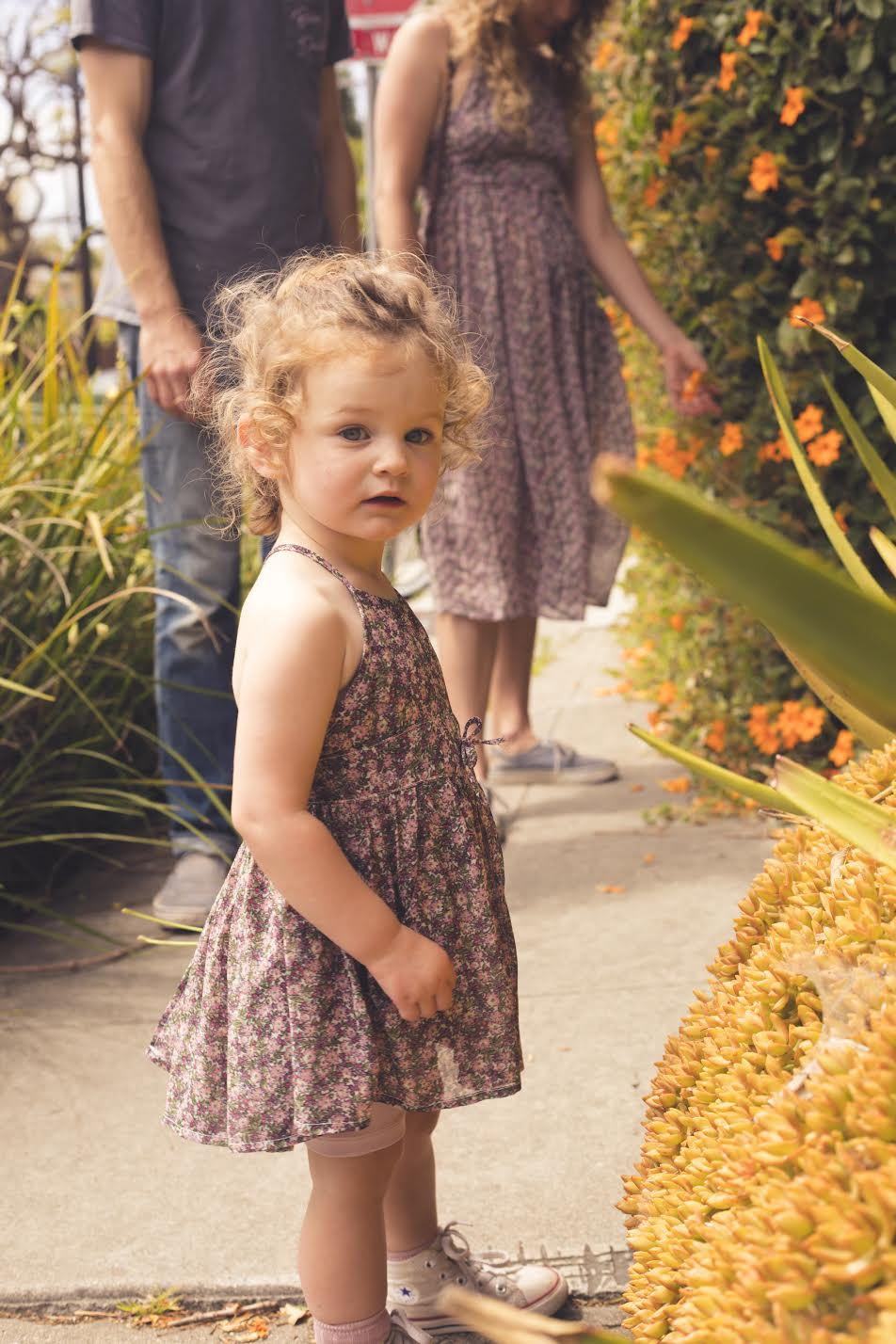 Baby Dandelion Dress - Wildflower