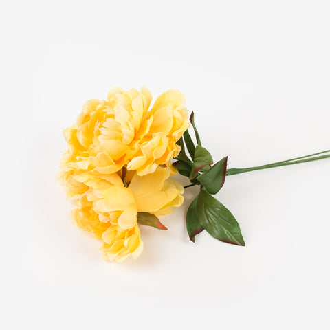 Bouquet of 3 peonies - Yellow