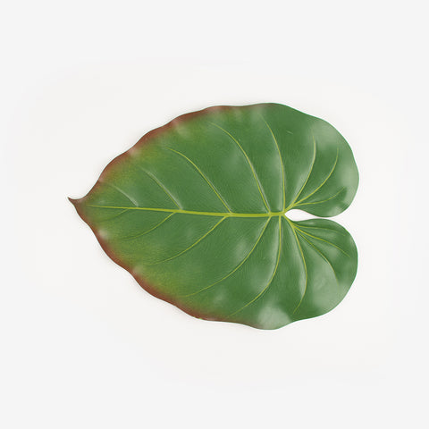 Leaf placemat - Philodendron