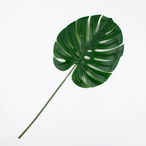 1 tropical leaf - Green
