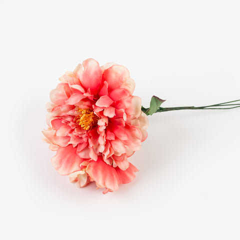 Bouquet of 3 peonies - Coral