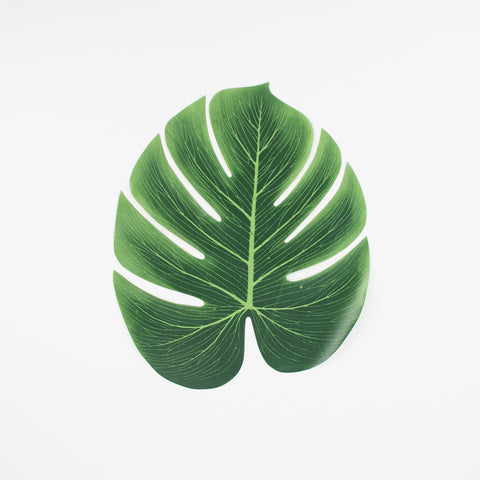 4 leaves of monstera
