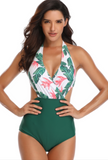Halter Backless Cut Out Floral Print Plus Size One Piece Swimwear
