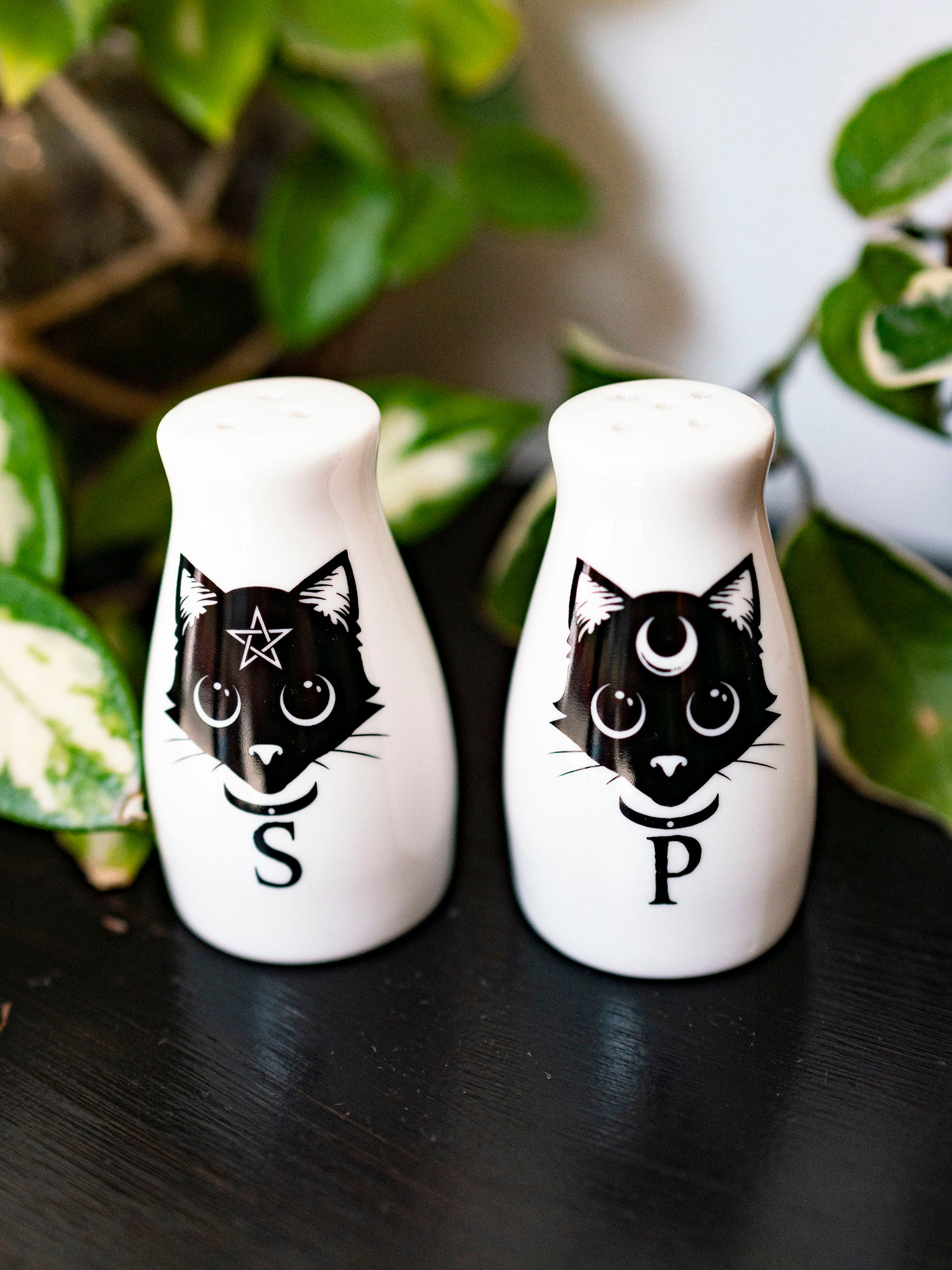 Black Cats Salt & Pepper Shakers