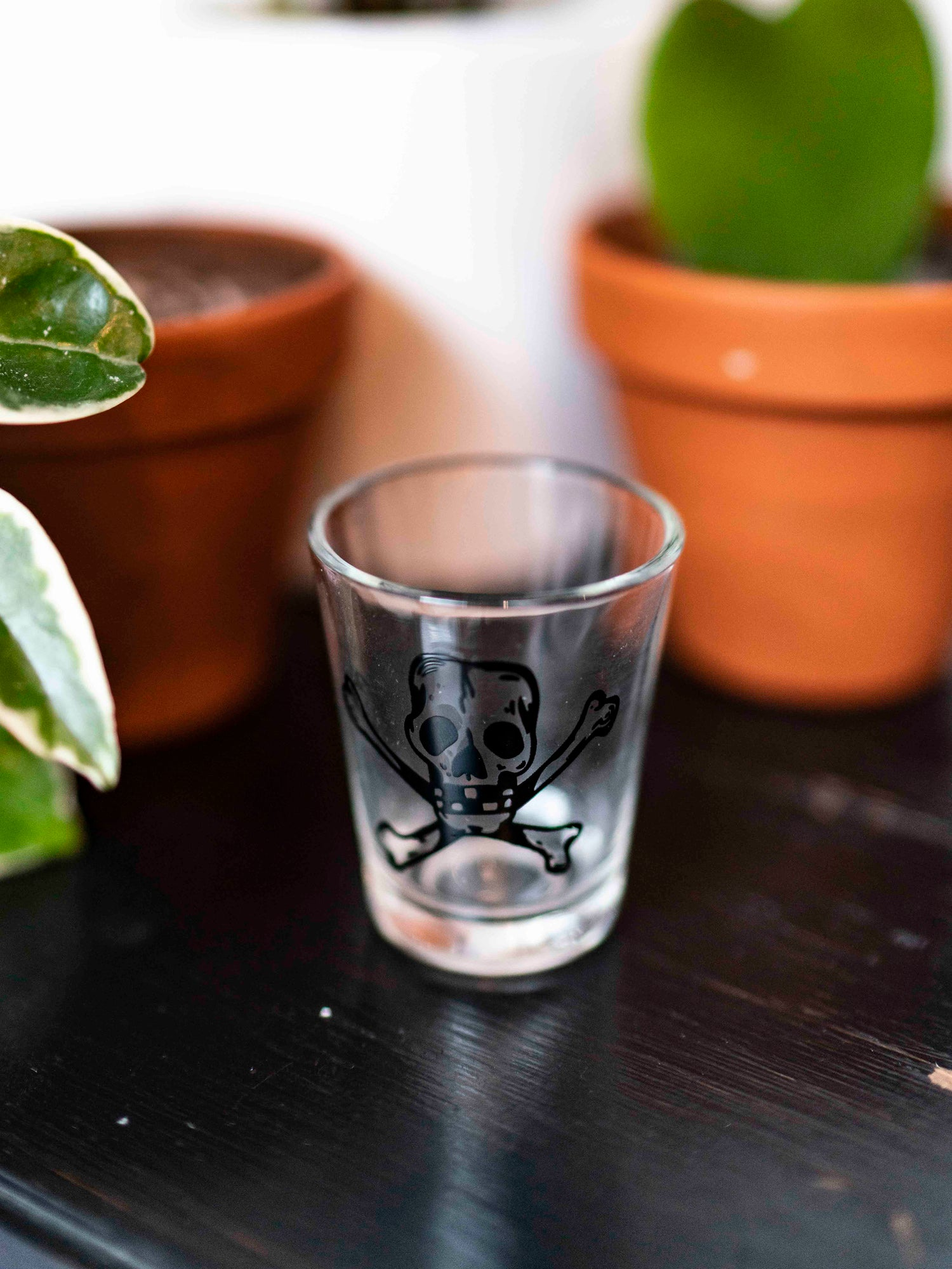 Skull and Bones Shot Glass