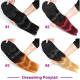 Straight Drawstring Ponytail Extensions