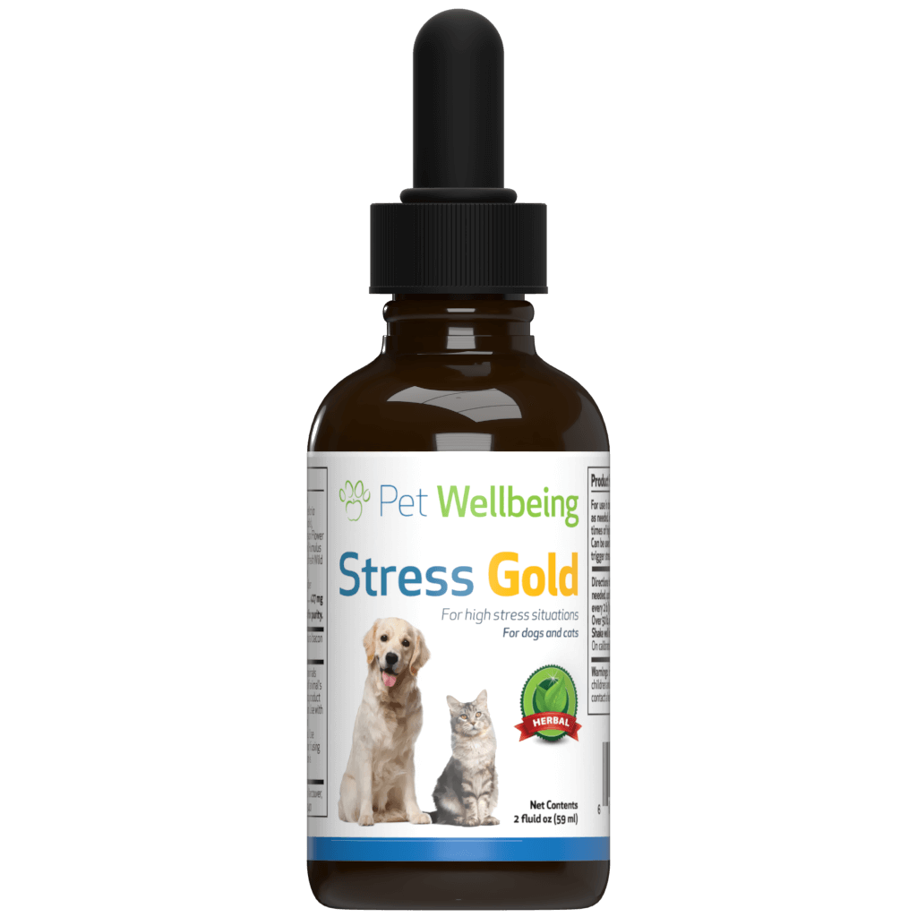 Stress Gold - Cat
