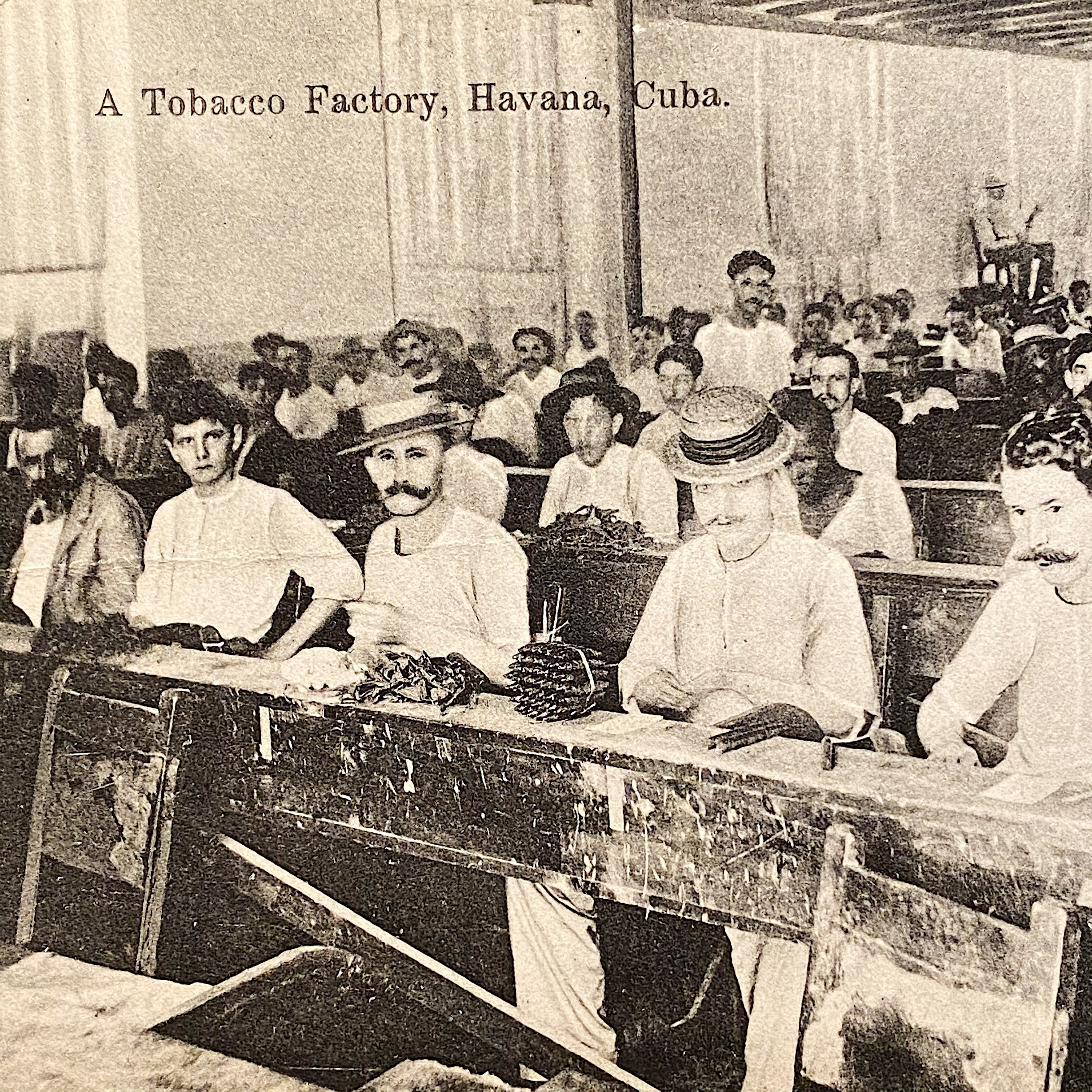 Antique RPPC of Cigar Factory - Early 1900s Tobacciana Postcards - Foreign Country Color Postcard - Rare Photography from Early 1900s