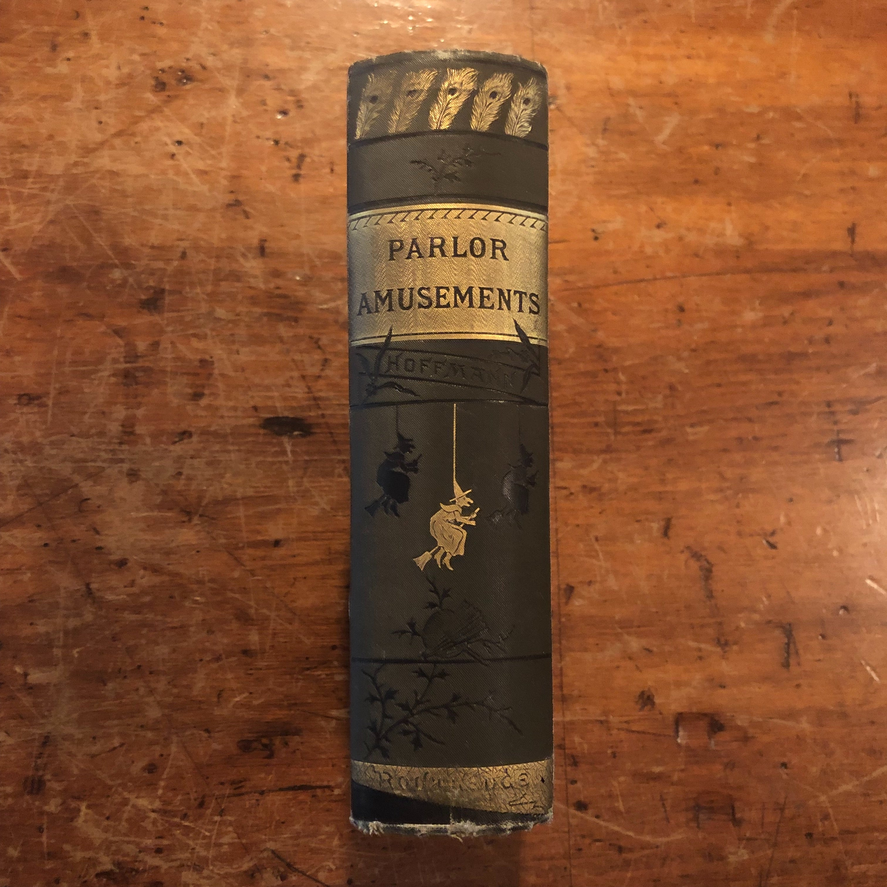 Parlor Amusements and Evening Party Entertainments Book | Professor Hoffman