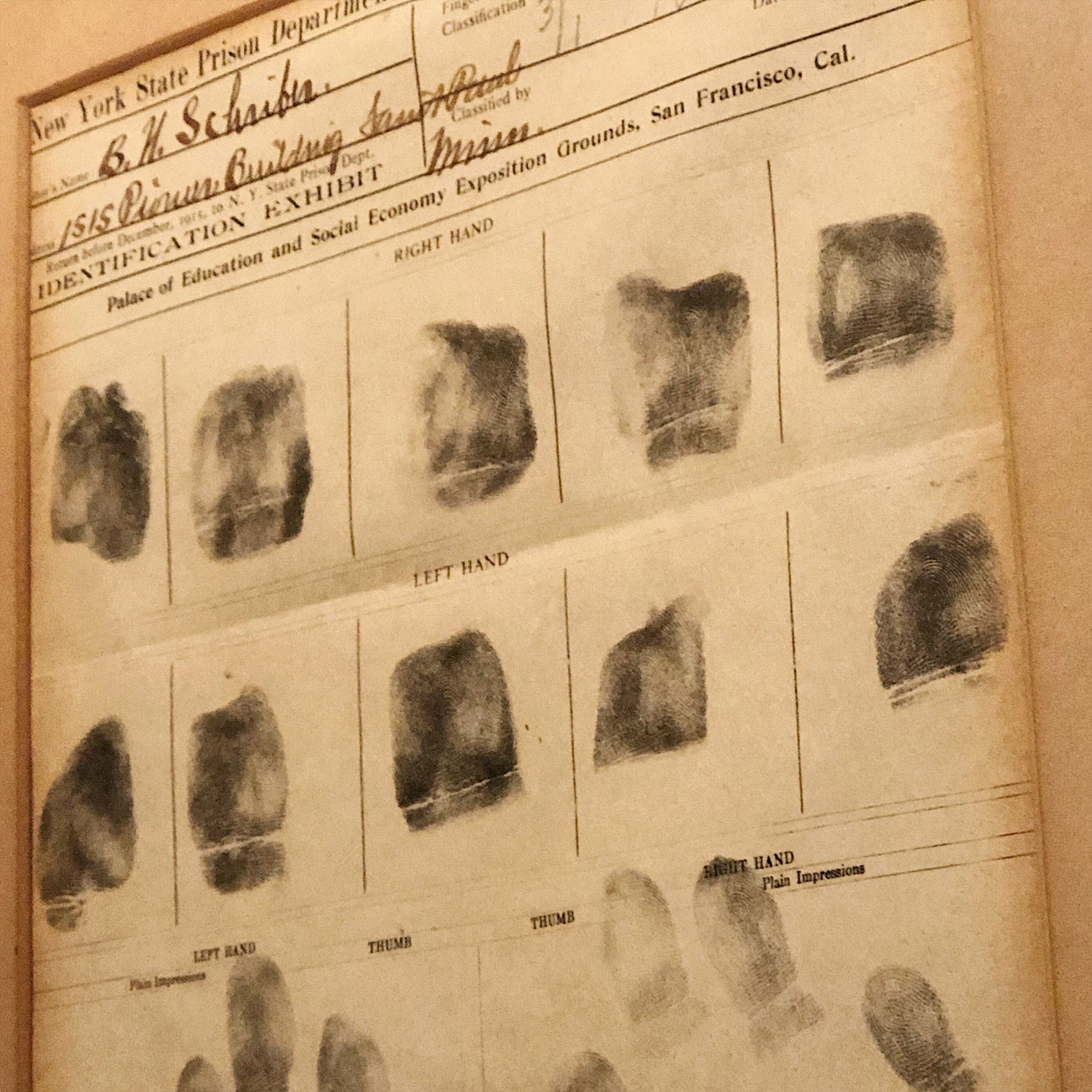 Prison Fingerprint Display from Panama Pacific Exposition | 1915
