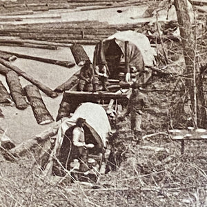 Antique Logging Photographs from 1860s | Louis Hill Estate