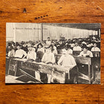 Tobacco Factory Antique RPPC of Cigar Factory - Early 1900s Tobacciana Postcards - Foreign Country Color Postcard - Rare Photography from Early 1900s
